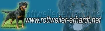 ROTTWEILER - ERHARDT